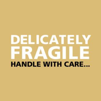 Delicately Fragile Back Cover