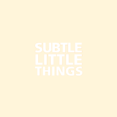 Subtle Little Things Back Cover